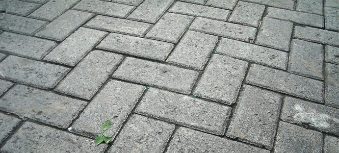 Paving In Nottingham